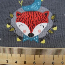 fox-gris-2