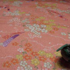 Ikanobori rose