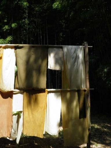 Teinture Bambouseraie